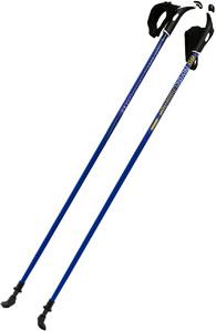 Палки для скандинавской ходьбы BG Nordic Challenge 105 см